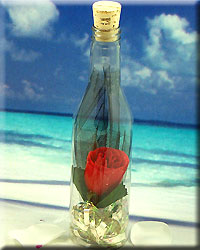 Single Red Rose plastic Message Bottle