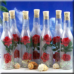 Message Bottle Invitation Double Red Roses